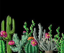 Seamless Border With Cactus And Flowers On Dark Background. Vector Illustration.