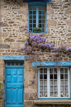 Wisteria On A Cottage Wall In Rural France