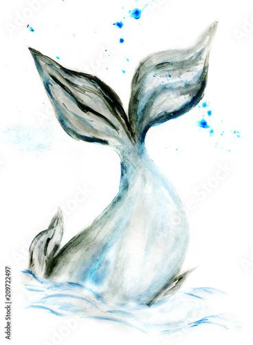 Photo  Cute whale watercolor
