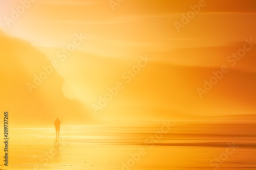 Fotografie, Obraz  lonely person walking on beach at sunset