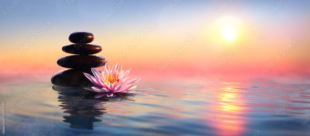 Fototapeta Zen Concept - Spa Stones And Waterlily In Lake At Sunset