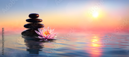 Tuinposter Waterlelies Zen Concept - Spa Stones And Waterlily In Lake At Sunset