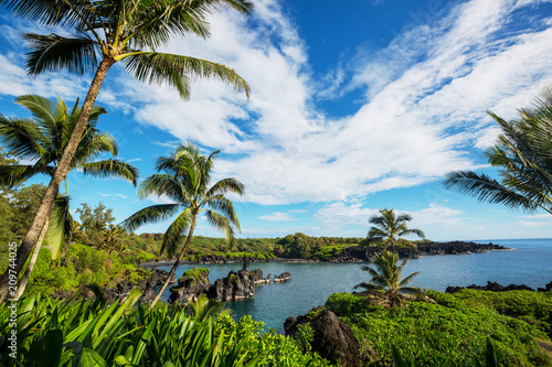 Papiers peints Océanie Maui