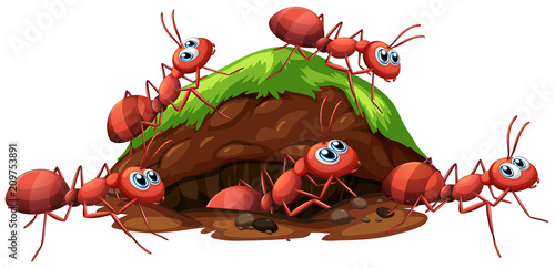 Deurstickers Kids A Fire Red Ants and Hole