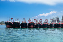 Fishing Trawlers Anchored In A...