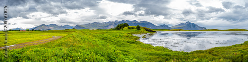 Wall Murals Eastern Europe Panoramic view of beautiful meadows field of grass and flowers near Hofn, Iceland