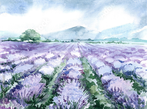 Fotografia  watercolor lavender field. scenic landscape of the Provence