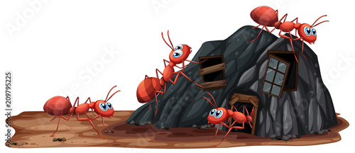 Deurstickers Kids Worker Ants on White Background