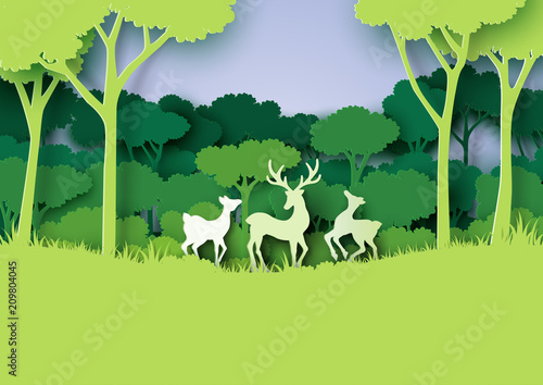 Deers wildlife family and nature forest landscape paper art style.Vector illustration.