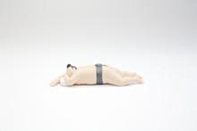 The Figure Of Sumo Wrestler In...