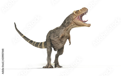 Tyrannosaurus Rex on white background - Fototapet