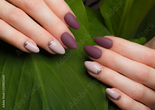 Tender neat manicure on female hands on a background of green leaves. Nail design