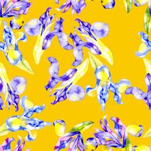 Flower Pattern. Beautiful, Airy, Mature, Feminine Irises. Watercolor. Illustration