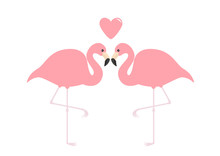 Flamingo Couple Pink Heart. Exotic Tropical Bird. Zoo Animal Collection. Cute Cartoon Character. Love Greeting Card. Flat Design. Valentines Day Symbol. White Background