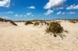 Dune beach at Costa Nova in Portugal