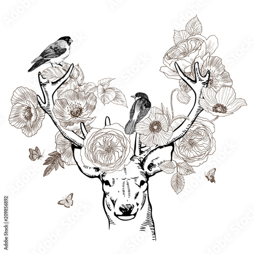 Hand Drawn Realistic Deer Surrounded By Flowers Beautiful Highly