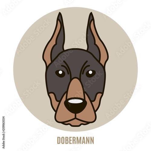 Portrait of Dobermann. Vector illustration Fotobehang