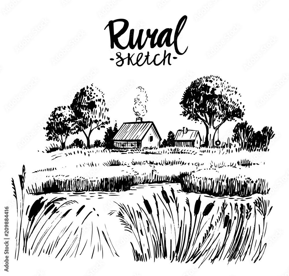 Fototapeta Rural landscape