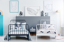 Front View Of Two Simple Beds, One White And The Other Black, In A Small Contemporary Bedroom Interior For Children. Posters Of A Rabbit, Whale And Elephant On W White Wall. Real Photo