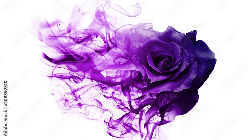 Fototapety, obrazy: Smoke rose from