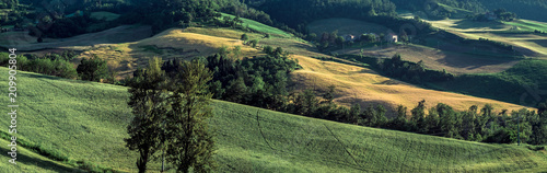 Bologna province countryside in summertime.