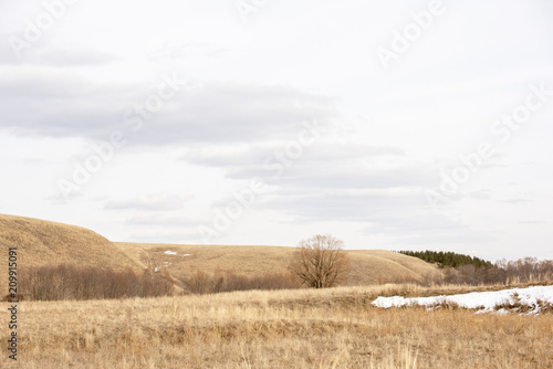 Spoed Foto op Canvas Wit Early spring landscape