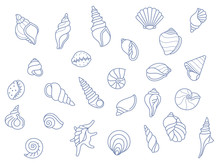Sea Shells Painted In Blue