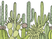 Horizontal Seamless Pattern With Illustrations Of Wild Cactuses