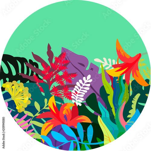Photo sur Toile Empreintes Graphiques Tropical background round