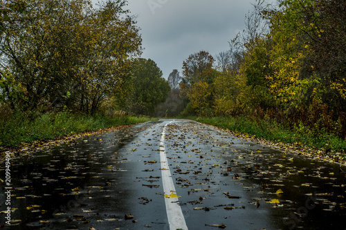 Photo autumn after rain