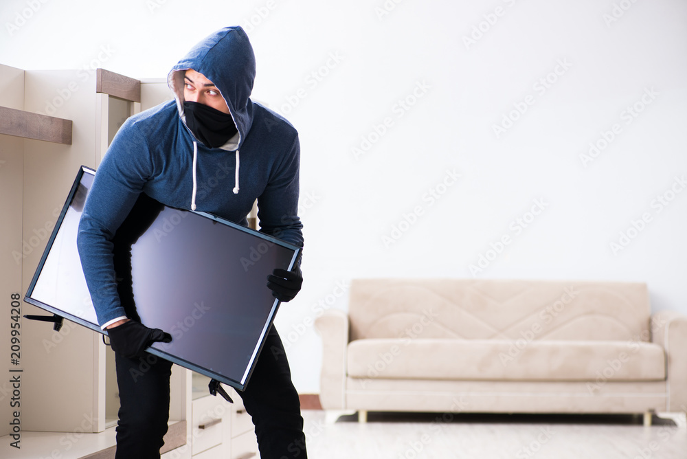 Fototapeta Man burglar stealing tv set from house