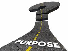 Purpose Road Question Mark Unc...