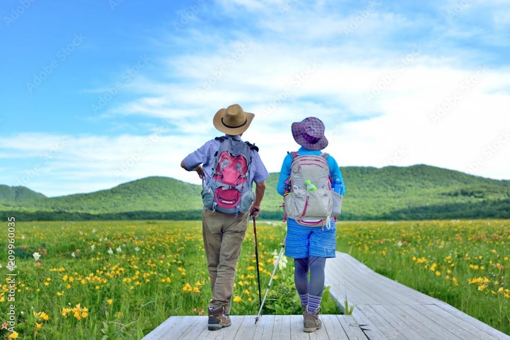 Fototapety, obrazy: 初夏の湿原を楽しむハイカー