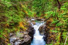 Little Qualicum Falls On Vanco...