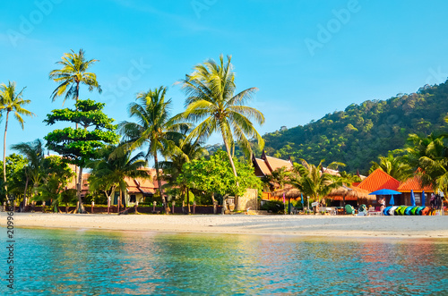 Fototapeta  Tropical sandy beach with palm trees and tropical forest