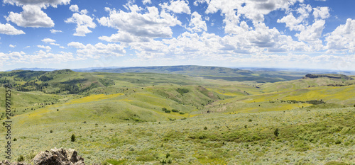 Photo  Mules Ears and Lupine Coloring the Hillsides of Southwestern Idaho and Southeast