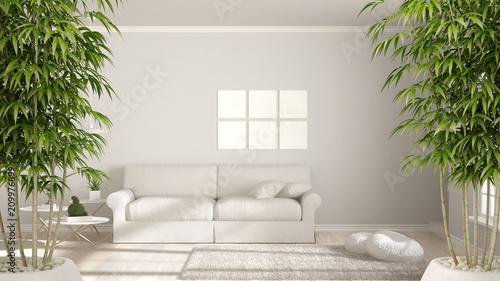 Fotografía  Zen interior with potted bamboo plant, natural interior design concept, minimali