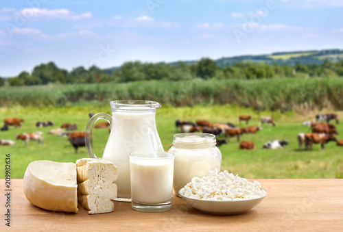 Montage in der Fensternische Milchprodukt Milk, sour cream, cheese and cottage cheese on wooden table on background of meadow with cows