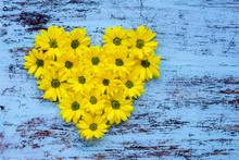 Golden-daisy Flowers In Heart ...