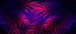Leinwandbild Motiv Neon background with tropical leaves