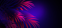 Neon Background With Tropical ...