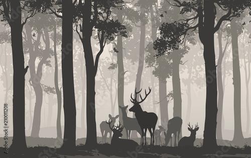 Fototapeta premium Naturalne tło z sylwetką lasu ze stadem jeleni. Bezszwowe tło poziome. Ilustracji wektorowych