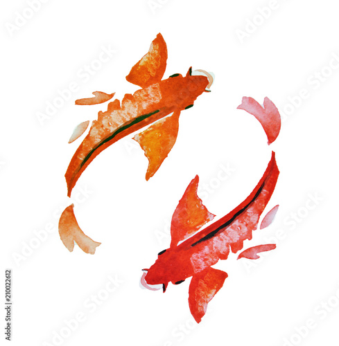 Photo  Hand-drawn watercolor Japanese koi floating in a circle
