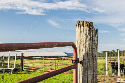 Fotografie, Obraz  Wooden Post and Red Gate on a Farm