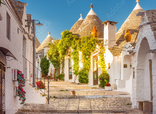 Photo Trulli of Alberobello, Puglia, Italy