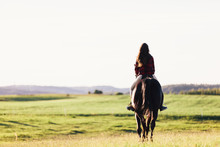 Young Girl Sitting On A Bay Horse, Riding On The Field.