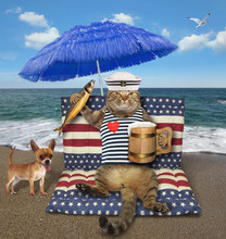 The Cat With A Mug Of Beer And A Smoked Fish Sits On A Air Bed Under A Blue Umbrella On The Beach. The Dog Is Next To Him.