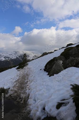 Spoed Foto op Canvas Heuvel Colina nevada