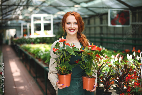 Beautiful smiling florist in apron standing with two flowers in pots and joyfully looking in camera in greenhouse