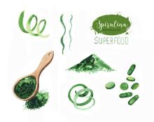 Hand Drawn Spirulina Seaweed P...